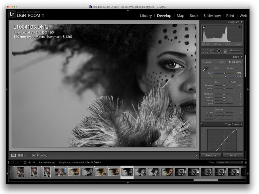 Leica S2, Apo-Macro-Summarit-S 120, Adobe Photoshop Lightroom 4 Marcin Rusinowski photography